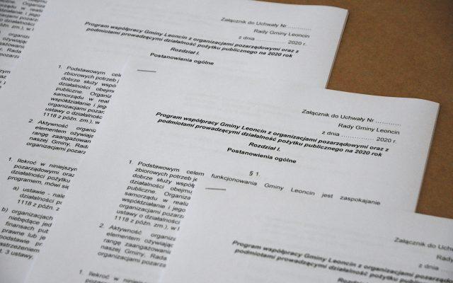 Spotkanie Organizacji Pozarządowych z Samorządem Gminy Leoncin